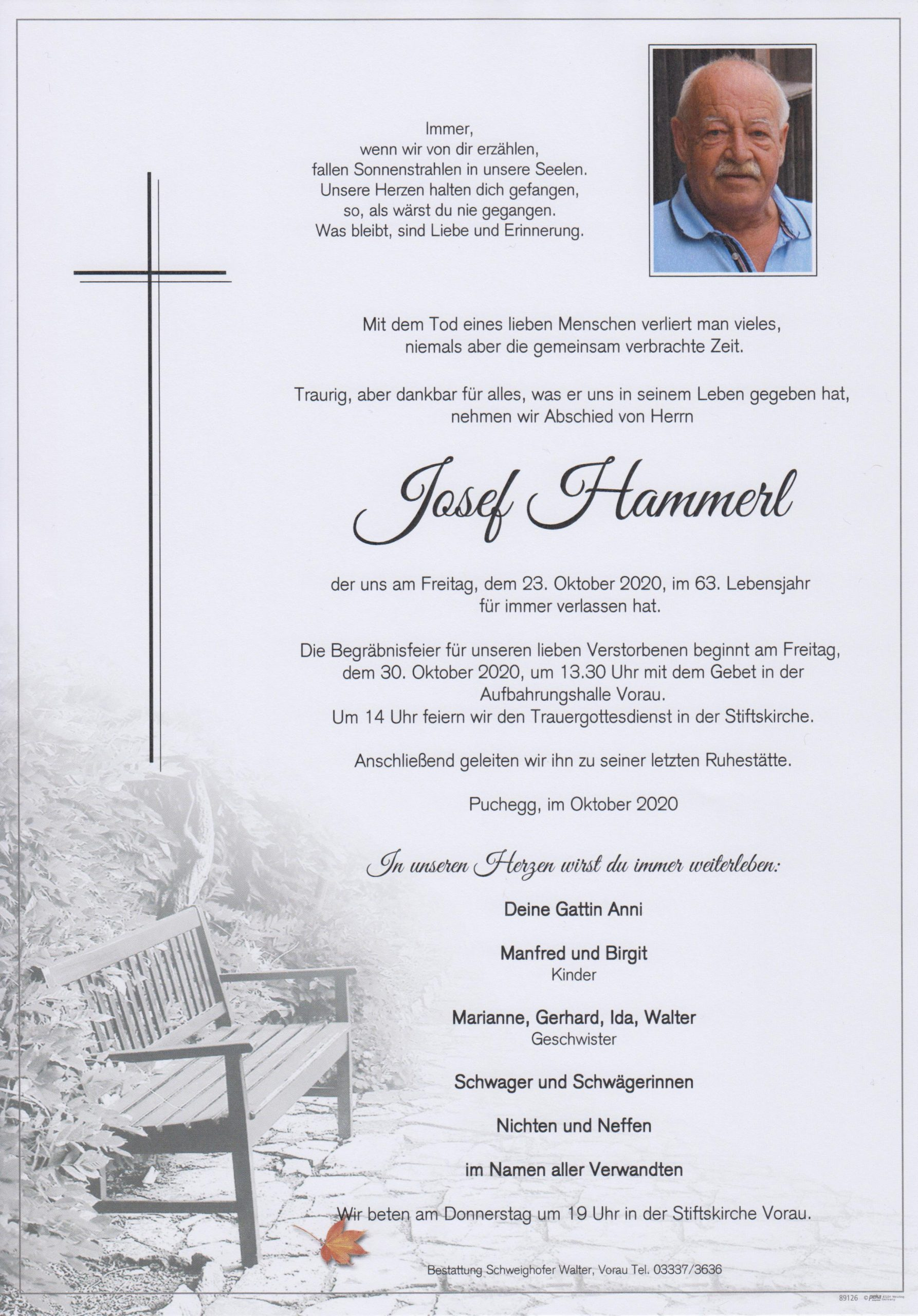 You are currently viewing Josef Hammerl